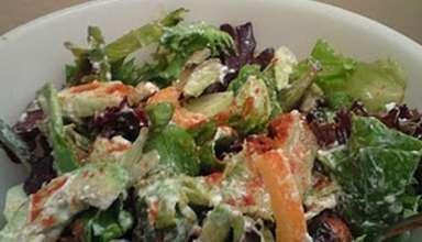 salata-web