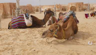 tunisia_erimos_05_2012-empros