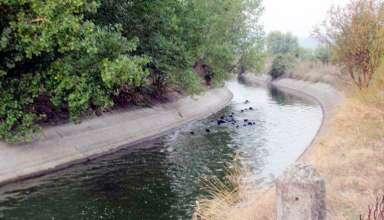 kanali