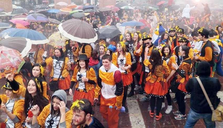 karnavali 20143