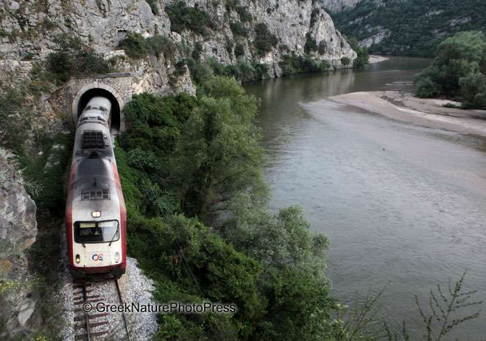 treno nestos