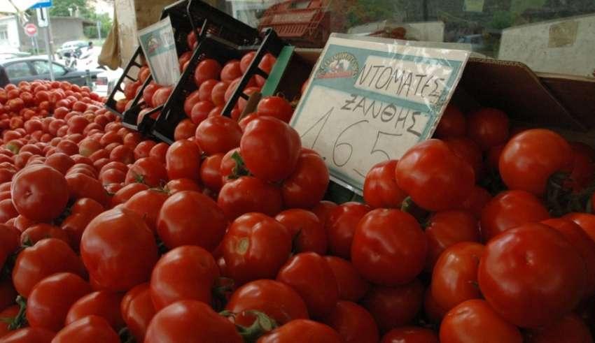 tomata xanthis