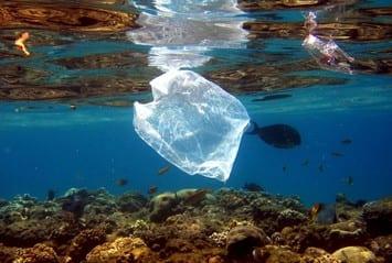 plastikes sakoyles