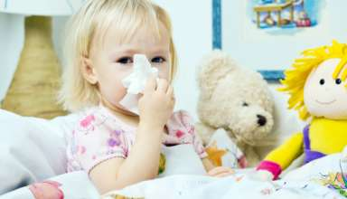 gripi 2