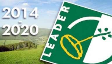 leader2014-20